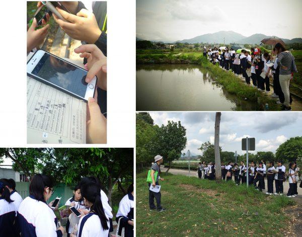 培道中學的中一同學在老師帶領下,到塱原作實地考察,在手機輸入GPS定位,製成農地使用分佈圖。 照片:Esri中國(香港)