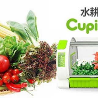 cupid-farm-automatic-grow-box-hydroponic-2