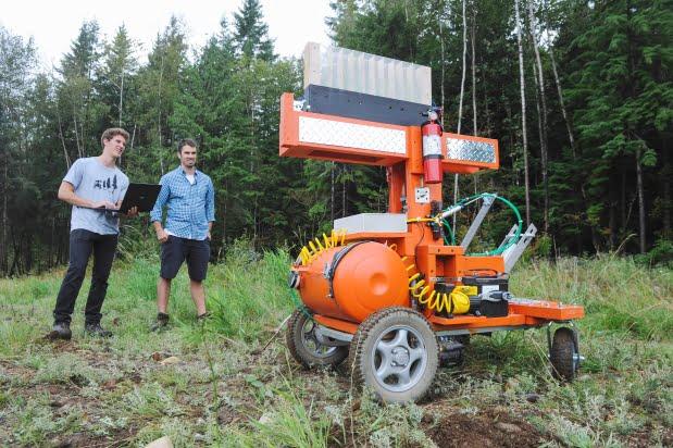 tree-rover